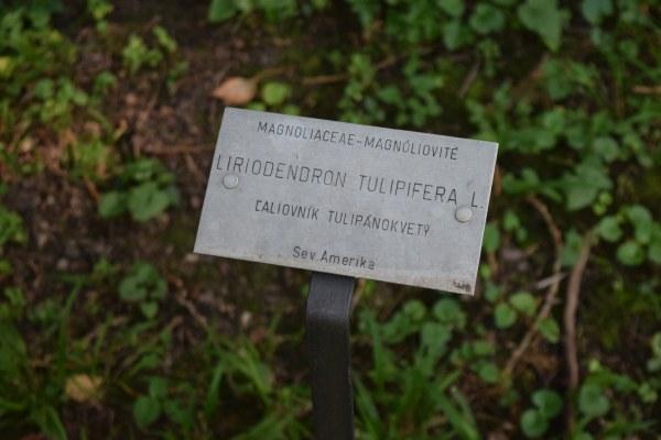 Botanická záhrada v Štiavnici