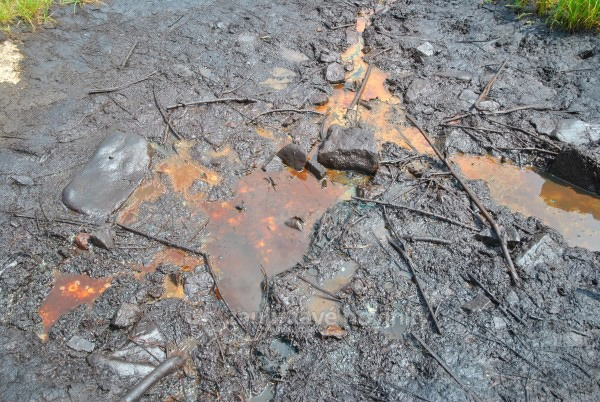 Korňa a ropný prameň
