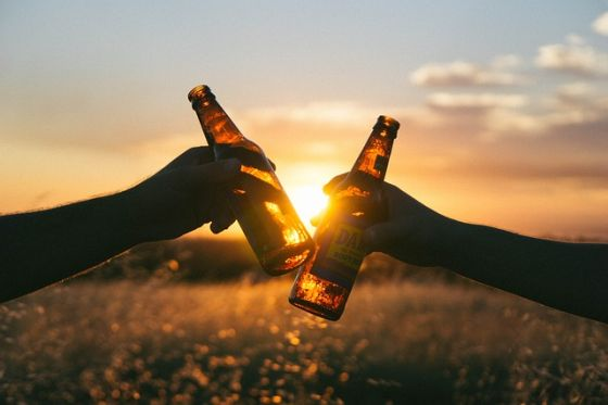 pivo chľast a alkohol