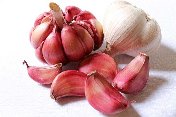 Poriadny cesnak