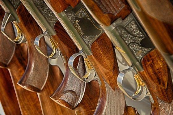 Strelnica a strelné zbrane