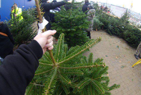 Vianočný stromček v IKEA