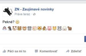 Ikony na Facebooku
