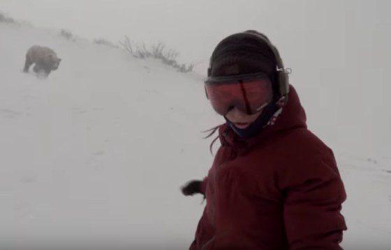 Medveď a snowboard