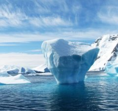ľadovec a more
