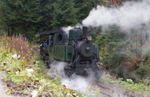 lesná železnica vo Vychylovke