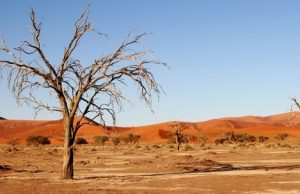 vyprahnutá púšť
