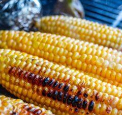 grilovaná kukurica