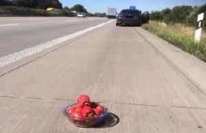 Tweet papriky a rajčiny
