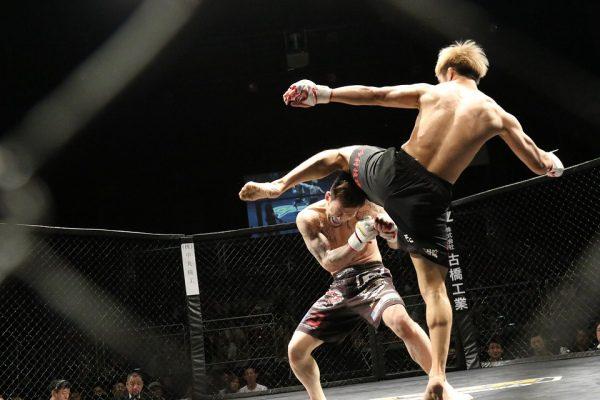 MMA bojové umenie