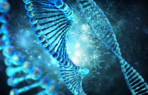 DNA genetika