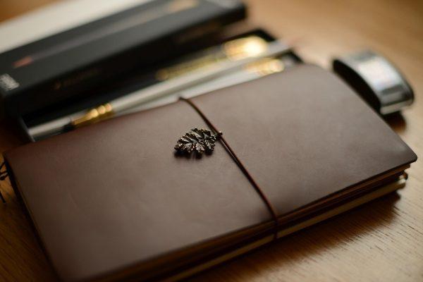 Denník písanie