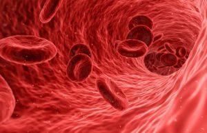 Krv a krvný tlak, informácie o krvi