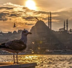 Istanbul Konštantínopol Carihrad