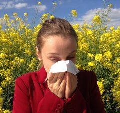Alergia a alergén: peľ z rastliny a kvetu