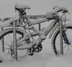 Bicykel zima