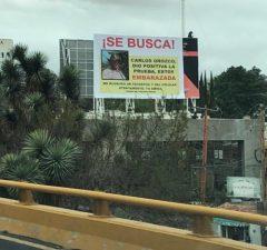 Se Busca, tehotná Mexičanka hľadá otecka