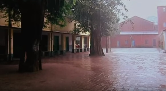 Červený dážď v Indii 2001