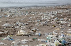 Plast a ekológia