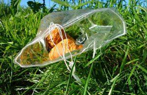 Odpad a jedlo v tráve