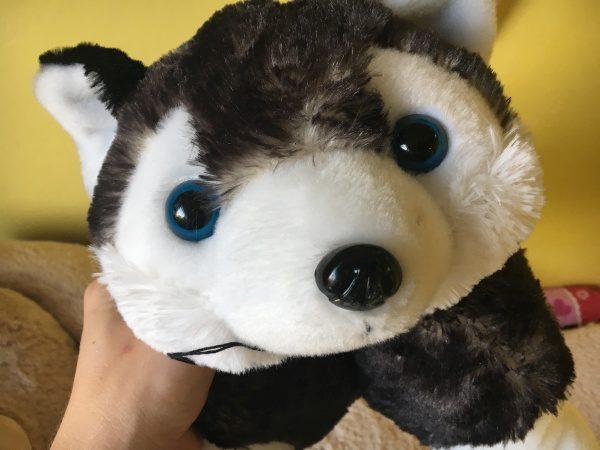 Vlk Tatranský, suvenír z Číny