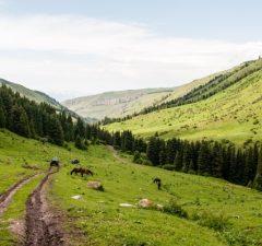Kirgizsko Kyrgyzstan
