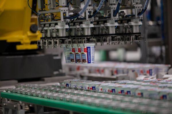 Robotizácia Hollandia