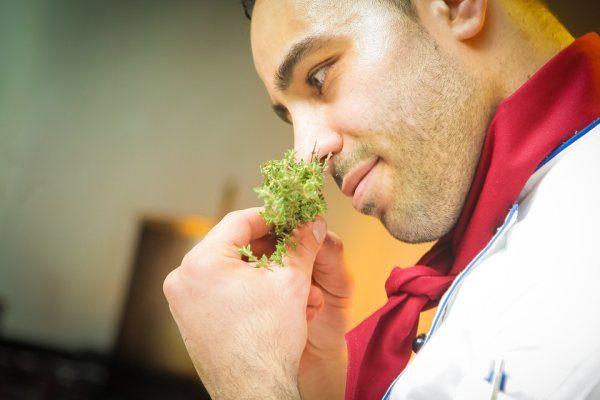 zápach kuchár gastronomia a bylinky
