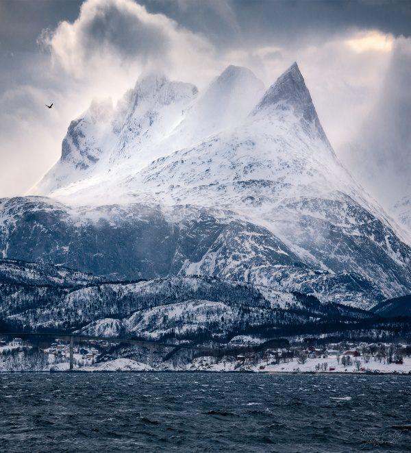 Nórsko, Dominik