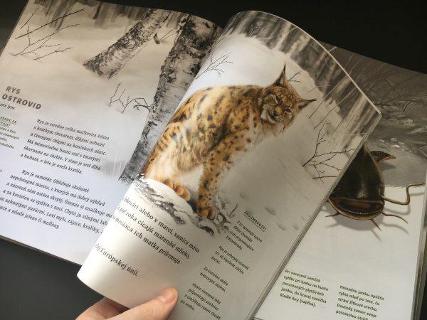 Zvierata Slovenska, kniha Fortuna Libri