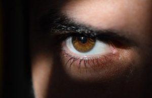 Stalker sledovač