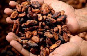 Kakao ruky ho držia