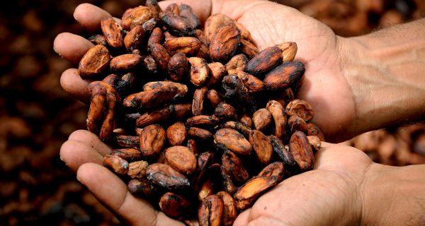 Kakao ruky ho držia, padalo v meste Olten
