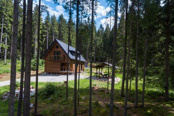 Demäňovská dolina les