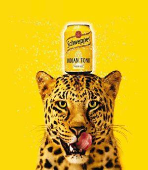 Schweppes gepard