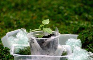 ekológia plasty