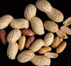 peanuts, arašidy