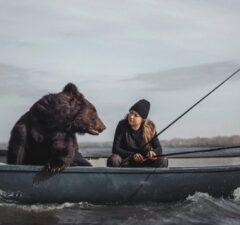Medveď hnedý Rusko, domáci maznáčik a Veronika